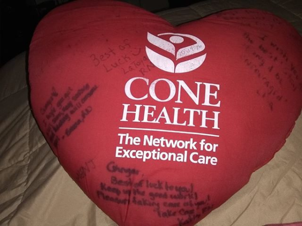 Therapeutic Heart Pillow